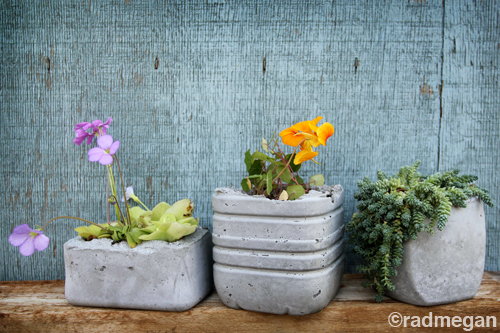 concrete planters (via radmegan)