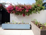 wood planters on casters