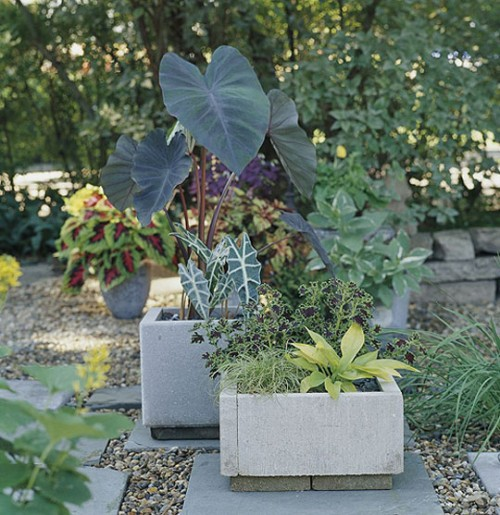 concrete planters from pavers (via shelterness)
