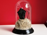 haunted house bell jar