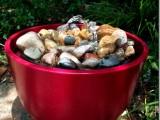 colorful garden fountain