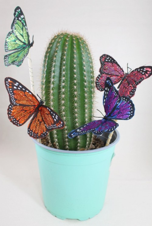butterfly plant pokes (via craftychica)
