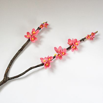 egg carton cherry blossoms (via spoonful)