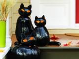 black cat-o-lantern