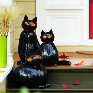 black cat-o-lantern (via sunset)