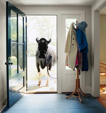 Blue Front Door Design
