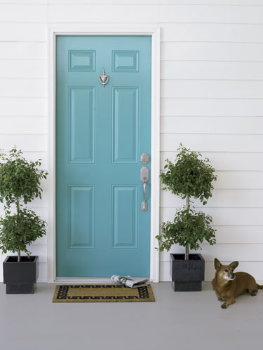 Picture of blue front door design for Door design and colour