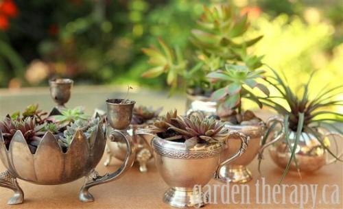 Charming Vintage Silver Garden Of Succulents