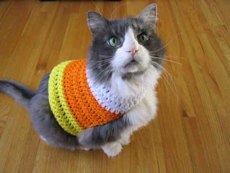 candy corn cat sweater (via diymaven)