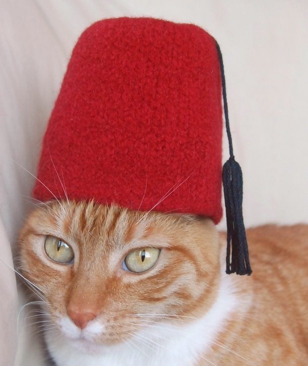 Turkey national hat for a cat