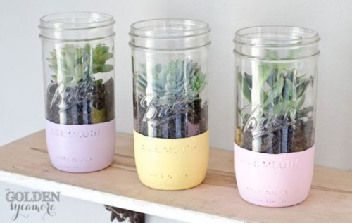 painted mason jar planters (via shelterness)