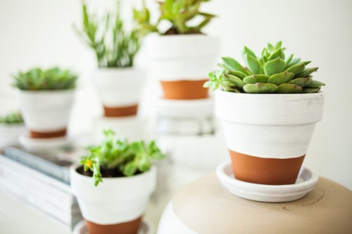 painted pots for succulents (via offbeatandinspired)