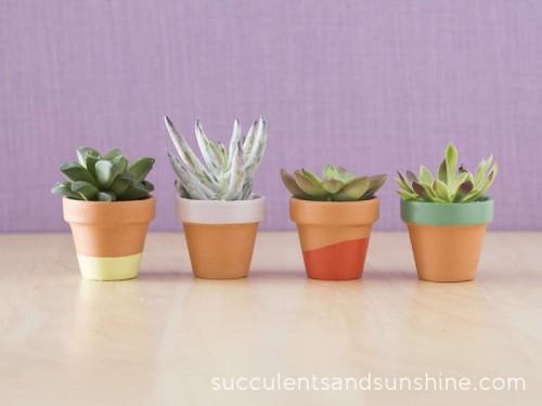 painted terra cotta pots (via succulentsandsunshine)