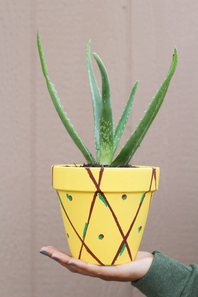 Picture Of cheerful diy juicy fruit planters to make  3