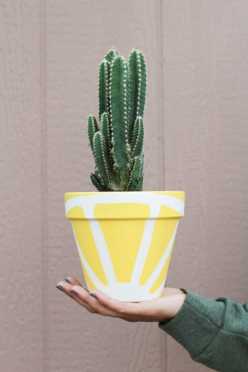 Cheerful DIY Juicy Fruit Planters To Make