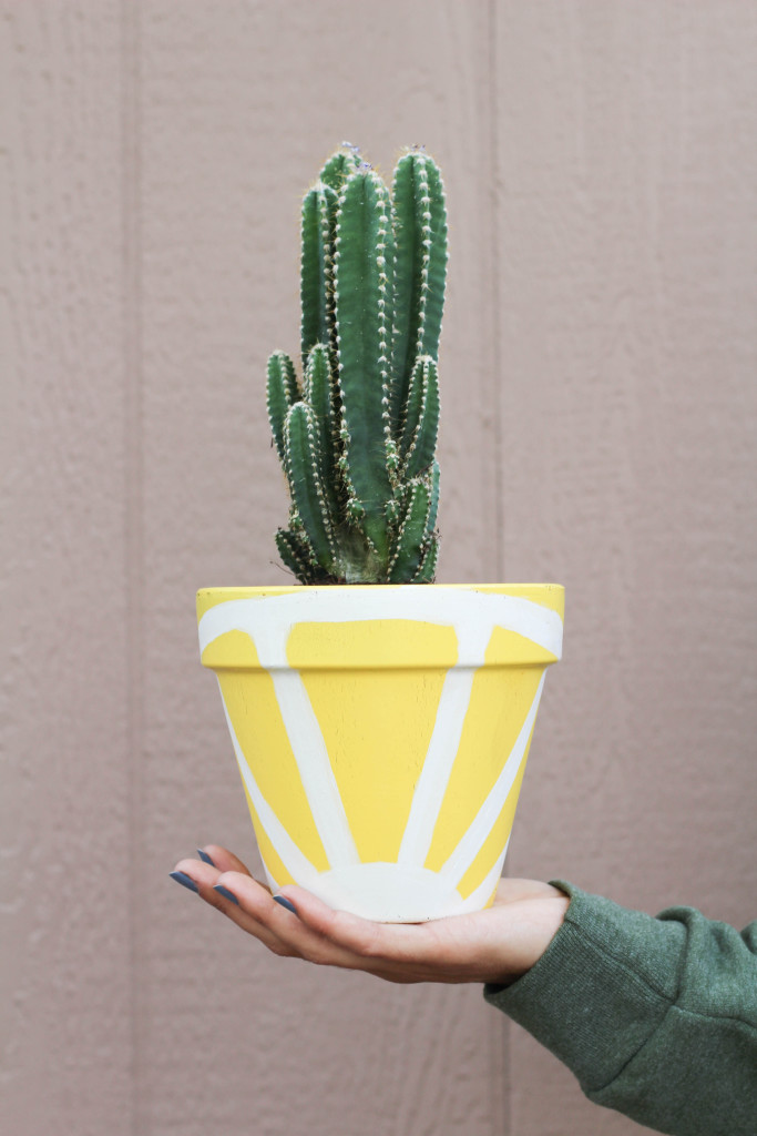 Picture Of cheerful diy juicy fruit planters to make  5