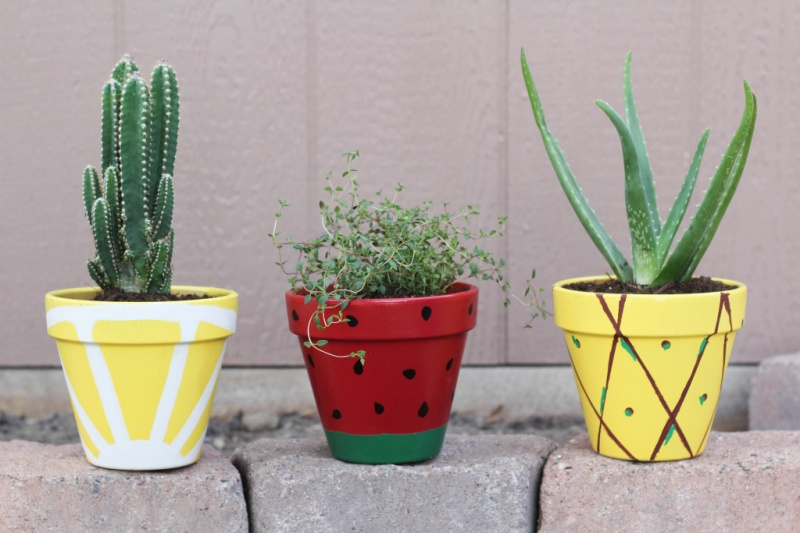 Picture Of cheerful diy juicy fruit planters to make  7