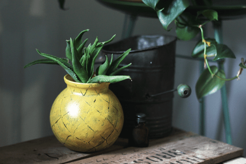 Cheerful DIY Pineapple-Inspired Planter