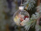 Christmas Tree Ornaments With Living Plants
