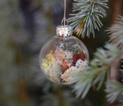 Christmas tree ornaments with living plants shelterness