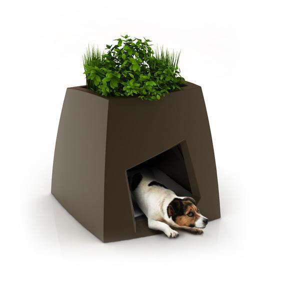 Contemporary Rock Like Pet House