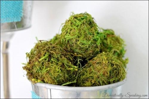 moss eggs (via domestically-speaking)