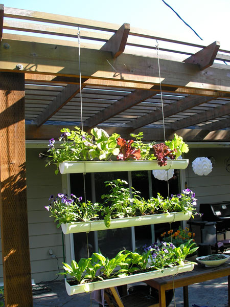 vertical garden (via shelterness)