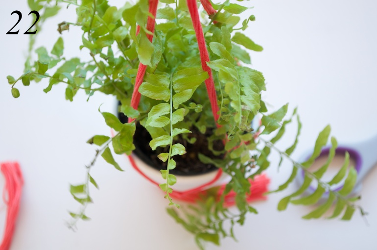 Cool And Simple Diy Macrame Plant Holder