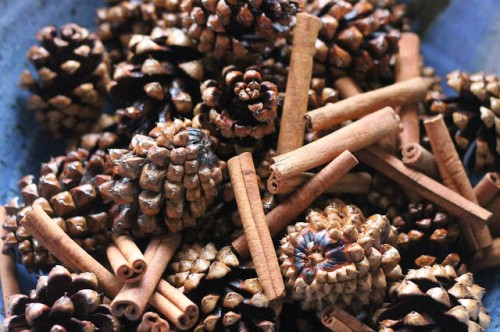 cinnamon pinecones (via treasureinanearthenvessel)
