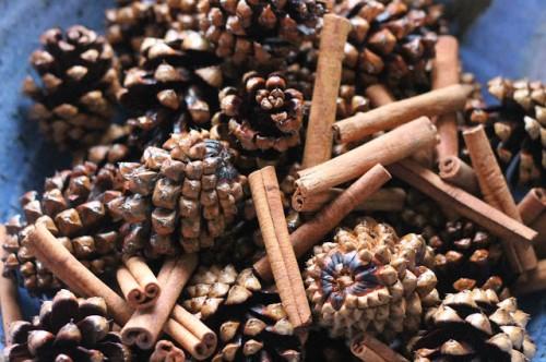 cinnamon pinecones (via treasureinanearthenvessel)