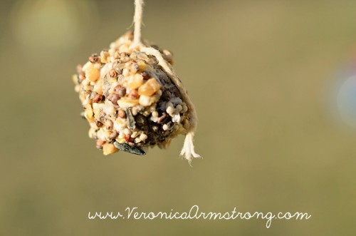 pine cone bird feeder (via veronicaarmstrong)