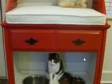 secretary desk turned into a pet station