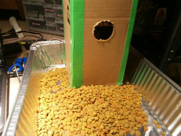 vacation pet feeder