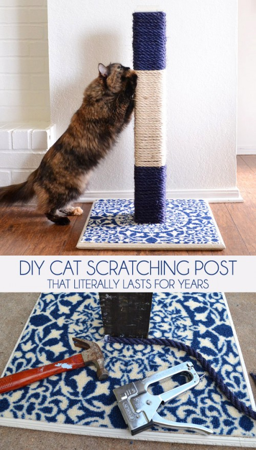 11 Cool Diy Cat Scratchers To Spoil Your Kitty Shelterness