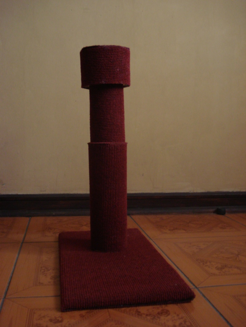 carpet pet scratcher