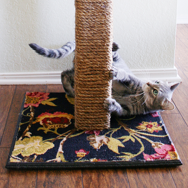 rope and carpet scratcher