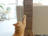 simple cardboard scratcher