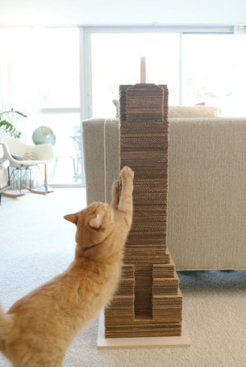 simple cardboard scratcher (via shelterness)