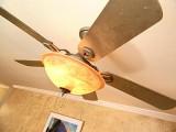 painted ceiling fan