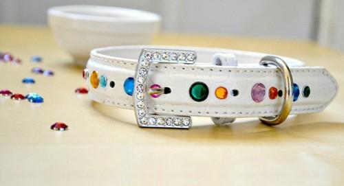 glamorous rhinestone collar (via sheknows)