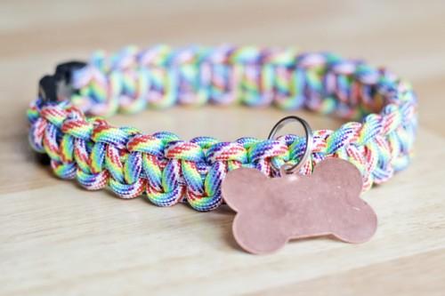 12 Cool DIY Dog Collars