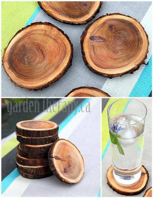 wood branch coasters (via shelterness)