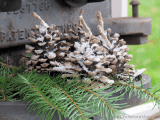 easy pinecone fire starter