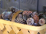 scented pinecone fire starter
