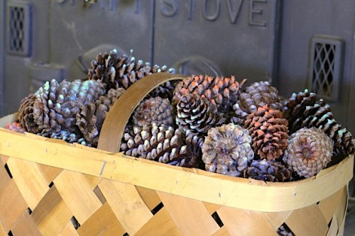 scented pinecone fire starter (via blog)