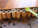 Cool Diy Mini Magnet Garden