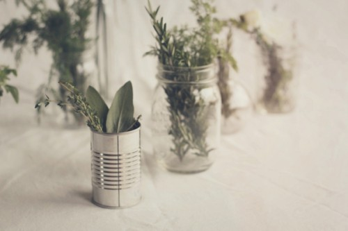 herbs in tins (via theknottybride)