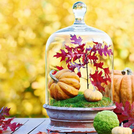 18 Cool DIY Thanksgiving Centerpieces