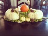 white pumpkins and moss centerpiece
