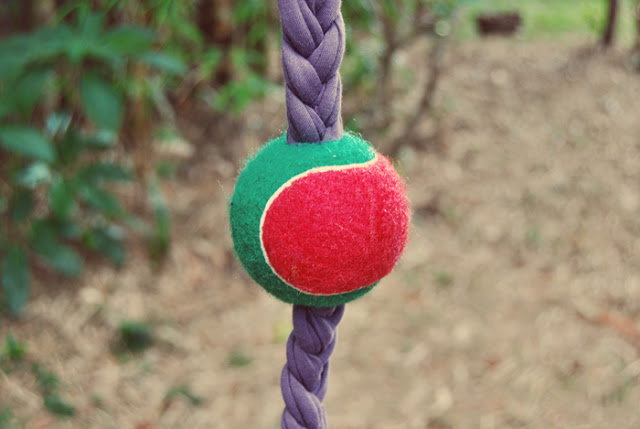 simple tennis ball and braid toy